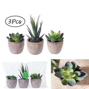 Image 2 - Mini bonsaï artificiel plantes succulentes