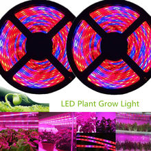 5M LED Grow Light Strip Spektrum Penuh Lampu UV Tanaman Tahan Air Phyto Lampu Merah Bluetape untuk Rumah Kaca Tumbuh tenda Hidroponik(China)