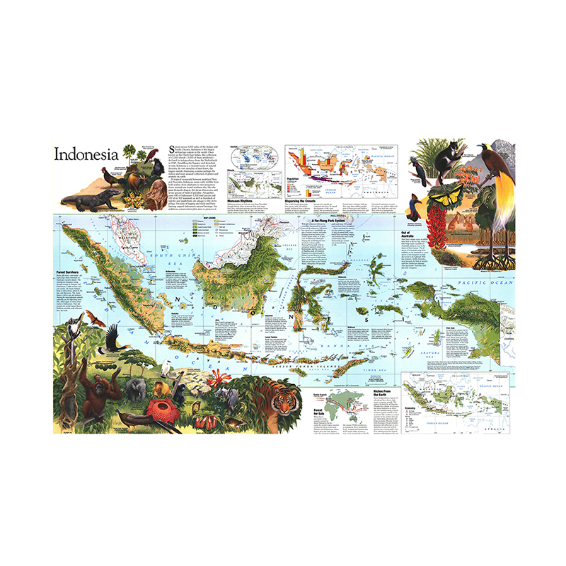 Indonesia Peta 150x100cm Peta Peta Hiasan Dinding Sekolah Kantor Tahan Air Non-woven Posters And Prints Living Room Home Decor