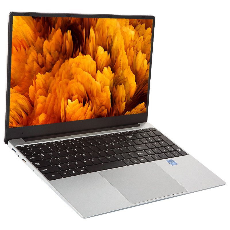 15.6 inch mini laptop pink silver color win 10 free installed ram 8g ssd 128g