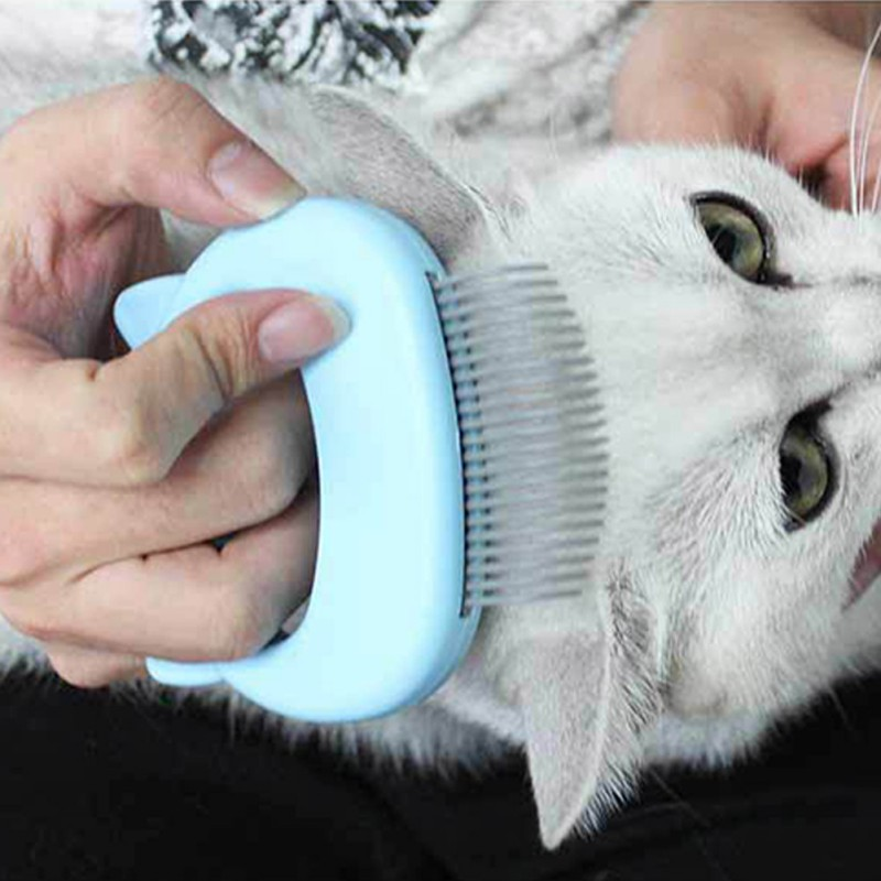 Cat Grooming Massage Brush with Shell Shaped Handle to Repair Withered and Yellow Hair of Cat