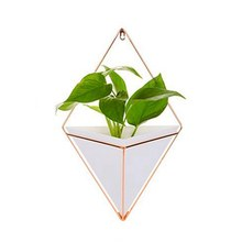 New-Wall Hanging Container Storage Rack Household Innovative Indoor Living Room Ornament Decor Garden Geometric Succulents Plant(China)