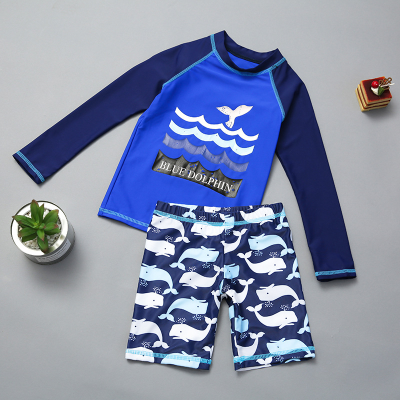 Children Split Type Tour Bathing Suit Boy Children Baby Long Sleeve Sun-resistant Quick-Dry Cartoon Bathing Suit Boxer Shorts Sw