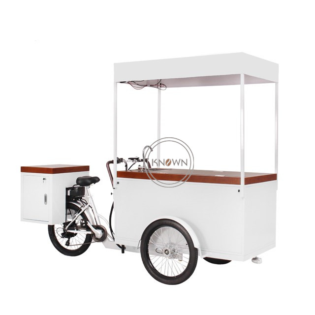 230L Ice Cream Cart Mobile Freezer Ice Cream Bike For Sale