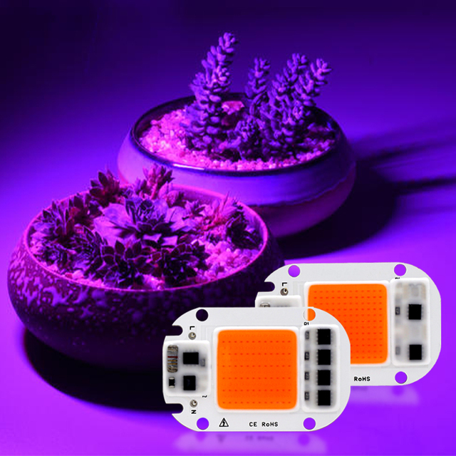 5Psc led成長cobチップphytolampフルスペクトル220v 110v 20ワット30ワット50ワットdiy屋内植物苗成長花成長fitolamp