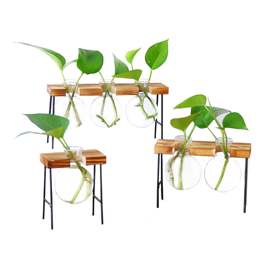 Single Hydroponic Vase