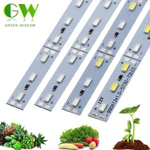 LED Grow Light 5730 DC12V 36 L