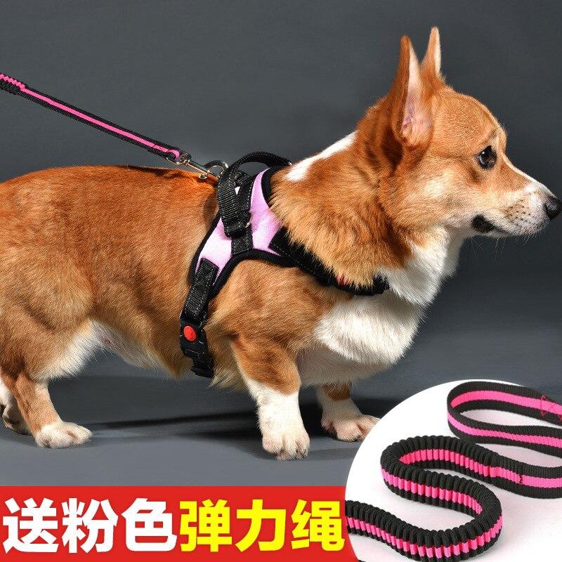 Dog Chain Dog Small And Medium Lanyard Teddy Dog Lanyard Sub-Traction Dog Corgi Neck Ring Dog Not Telescopic Chest And Back