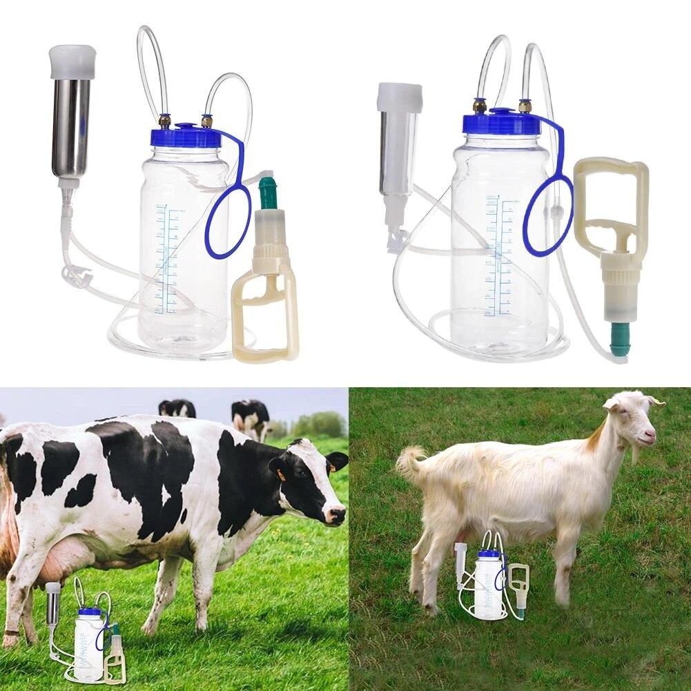 En acier inoxydable Lucky Farm Pour mouton cheval ch/èvre Egoutteur automatique pour bovins avec trou de vidange chien