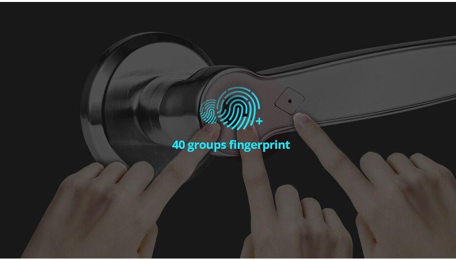 H1ff5e927e5d44cc987f1f9e301a6f610u Golden Security Left Right Handle Smart Unlock 360 Degree Fingerprint Door Lock Home Security Anti-theft Access control system