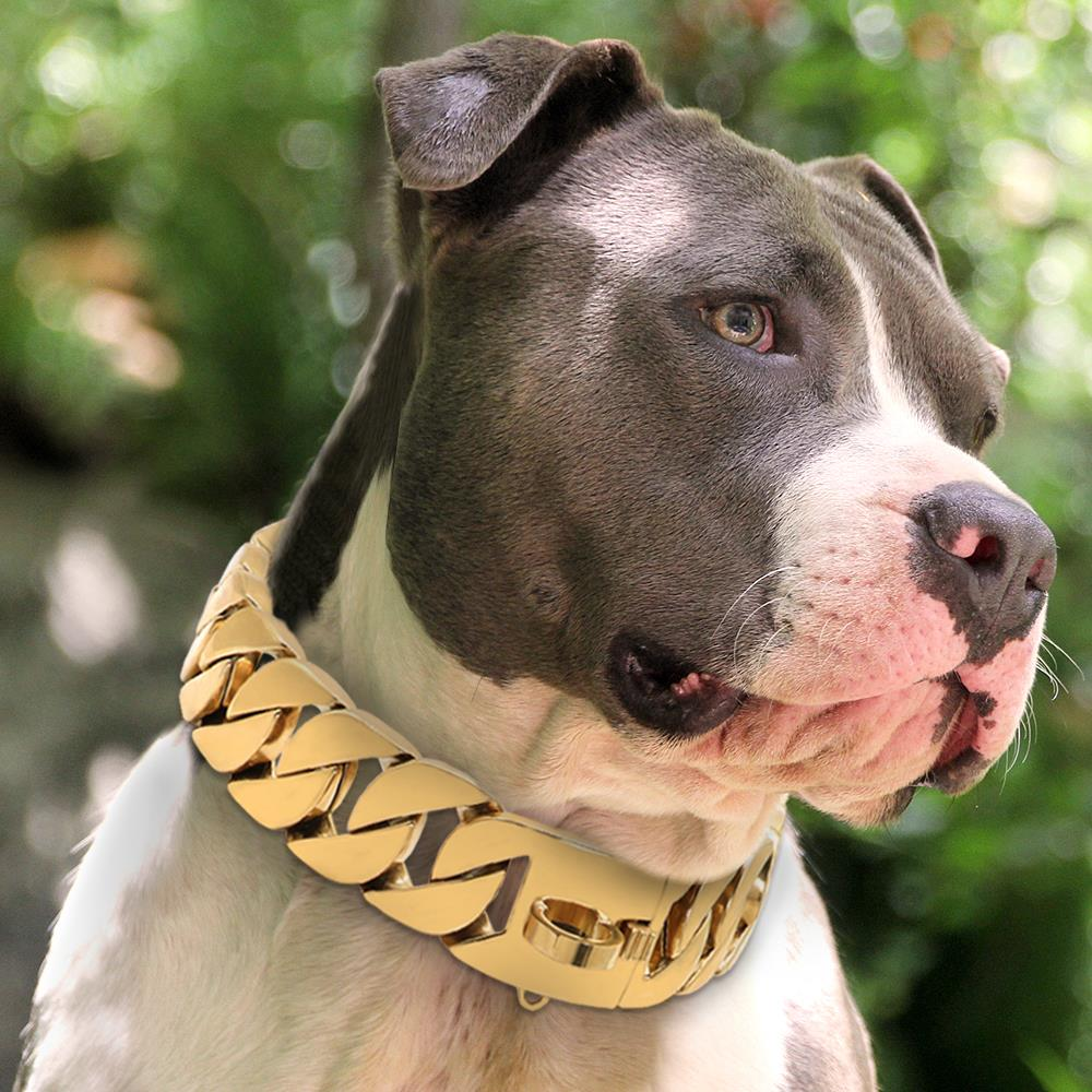 Canine - Strong Metal Dog Chain Collars Stainless Steel Pet Training Choke Collar For Large Dogs Pitbull Bulldog Silver Gold Show Collar VIP Dog Collar