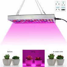 300 Вт светодиодный свет для выращивания гидропоники полный спектр Крытый Veg завод лампа панель растение светать энергосберегающие лампы для выращивания Sep 6