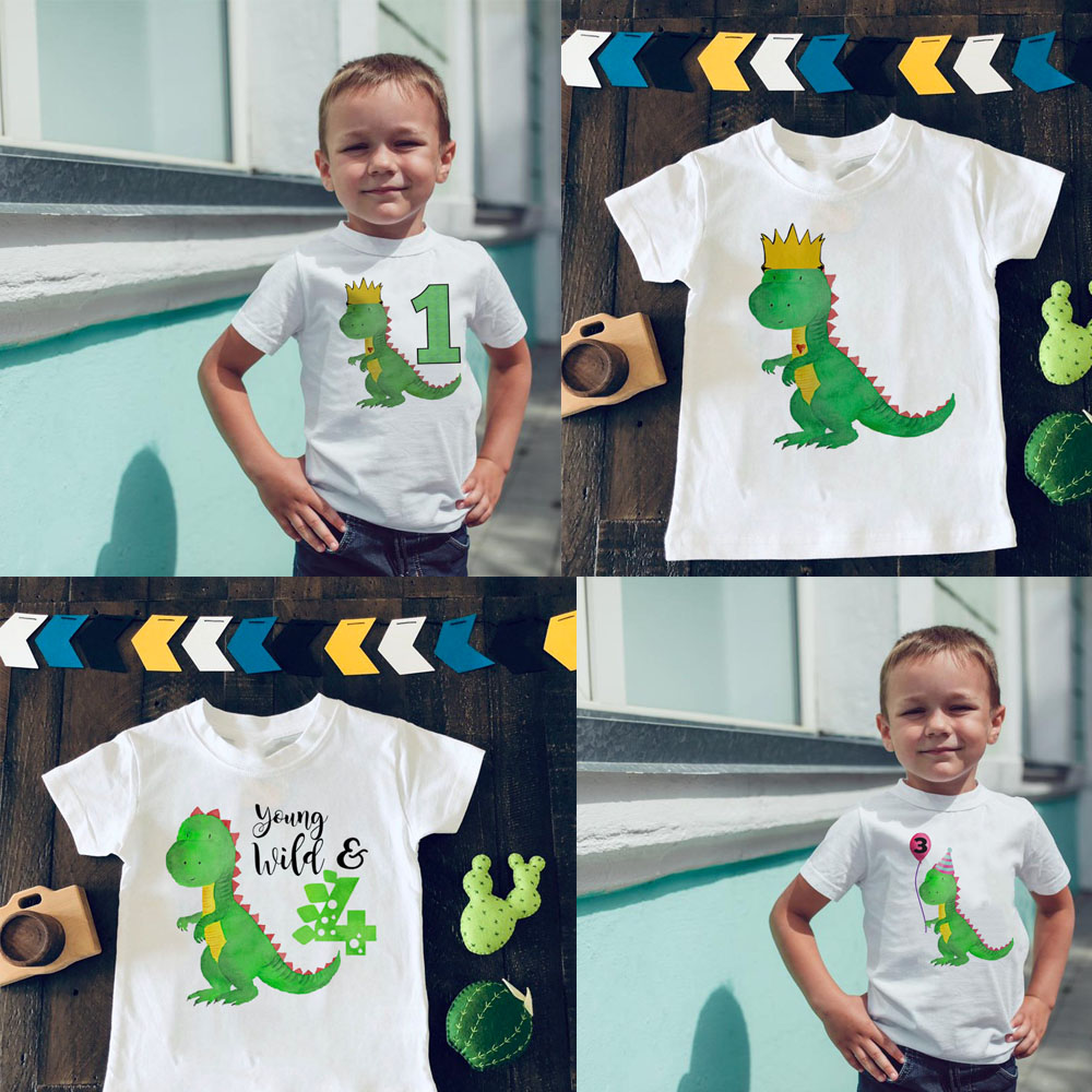 Dinosaur Birthday Shirt 1st Birthday T-Shirt Birthday Wild One Tee Dinosaur Party Shirt Dinosaur Theme Gift Boys Fashion Tee