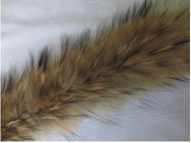 Nuovo Inverno Reale Naturale del Cane di Raccoon Collo di Pelliccia Sciarpe Delle Donne Dell'annata Femminile Sciarpe Calde Del Collare Dell'annata di Lusso Collo di Pelliccia Cap v655
