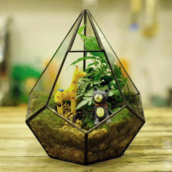 Flower-Pot-Air-Plant-Planter-Glass-Box-DIY-Micro-Landscape-Glass-Bottle-Garden-Polyhedron-Glass-Geometric.jpg_q50.jpg