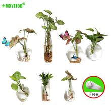 Get more info on the Hot Sale Wall-mounted Glass Vase Hydroponic Plant Potted Transparent Fish Tank Indoor Courtyard Suspension Ornament Flower fot
