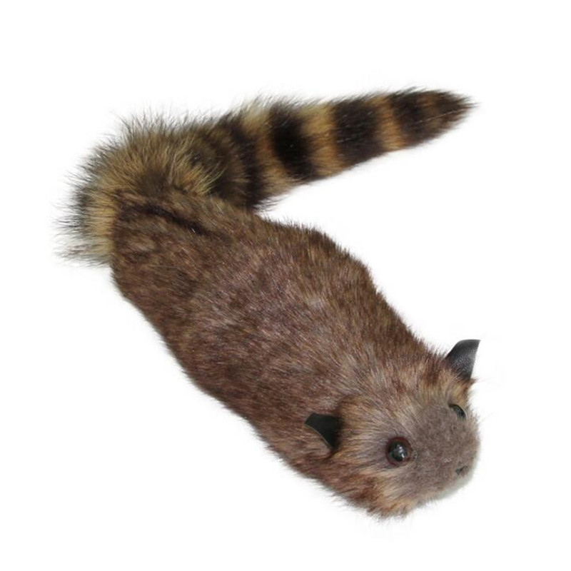 The Rocky Raccoon,Robbie Magic Raccoon Tricks,Props,Comedy,Mentalism,Gimmick,Spring Animal Toy Appearing Stage Magic,Funny Toys