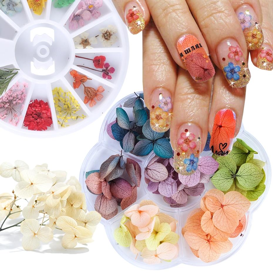 1 Box Mix Dried Flowers Nail Decorations 3D Natural Artificial Leaf Floral Nail Art Designs DIY Manicure Accessories JI1524-1