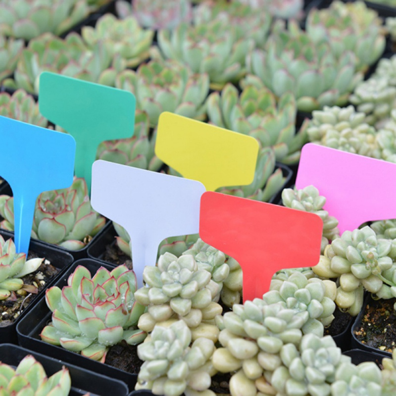 Gardening Plant T Shape Waterproof Tags Mark Garden Tools Seedling Tray Flower Vegetable Planting Label Tool Farm 100pcs