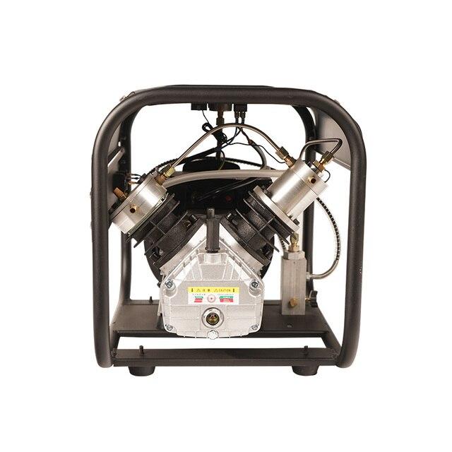 TUXING 4500Psi Doppel Zylinder PCP Elektrische Rir Pumpe Hochdruck Paintball Luft Kompressor für Luft Gewehr 6,8 L Tank 220V 110V