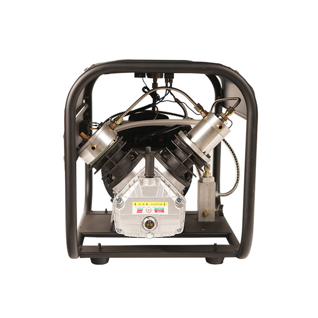 TUXING 4500Psi Double Cylinder PCP Electric Rir Pump High Pressure Paintball Air Compressor for Air Rifle 6.8L Tank 220V 110V