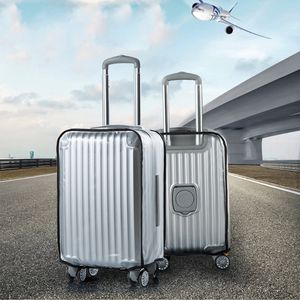 Frosted Transparent Luggage Re