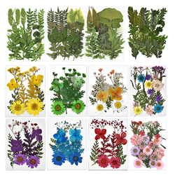 1 Bag Pressed Dried Flowers Leaves Resin Filling For Epoxy Resin Craft Making DIY Scrapbooking Home Decoration