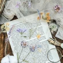 10 шт/лот дневник для студентов растения цветок ретро специальная