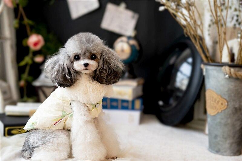 Roupas para animais de estimação inverno moda