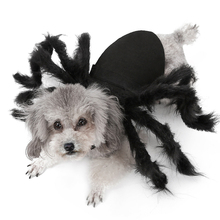 Pet Dogs Clothes Spider Cosplay Costume for Cat Dog Bat Role Play Dressing Up For Party Christmas Halloween