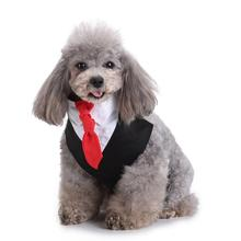 Pet Dog Cat Bib Saliva Suit Bowtie Tie Towel Scarf Dog Cat Spring Summer Clothes Puppy Supp