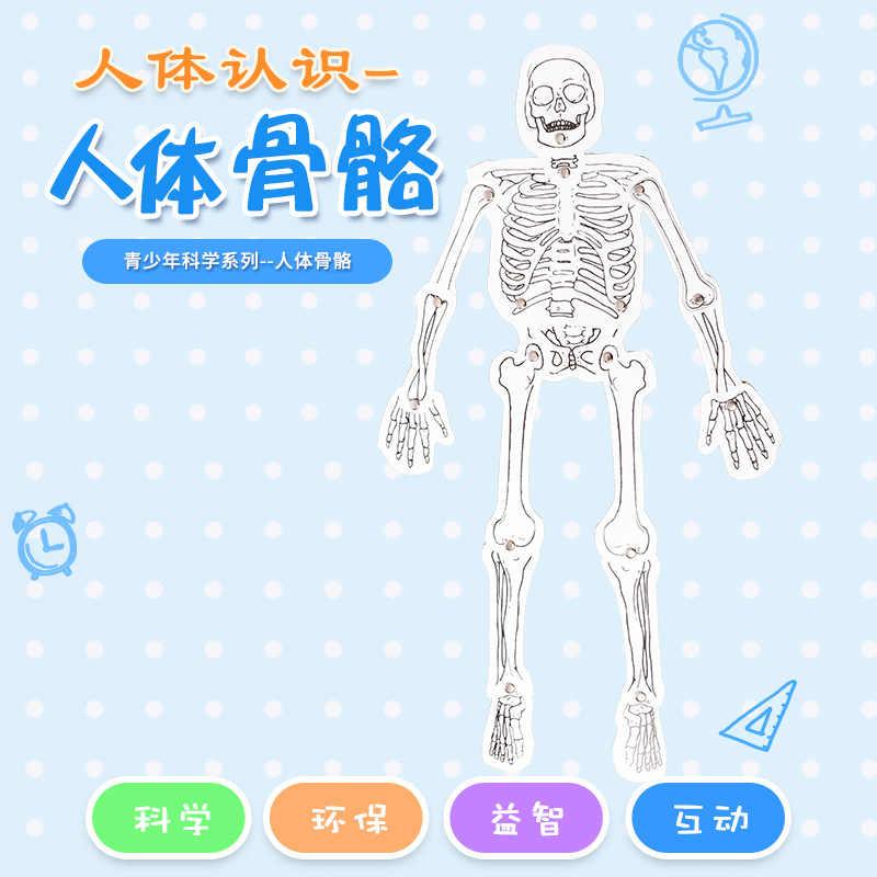 Cina Scienza Publishing & Media Ltd. (cspm) apparecchiature Self-Made Modello di Scheletro Umano Assemblato Scienza E della Tecnologia Piccolo Prod