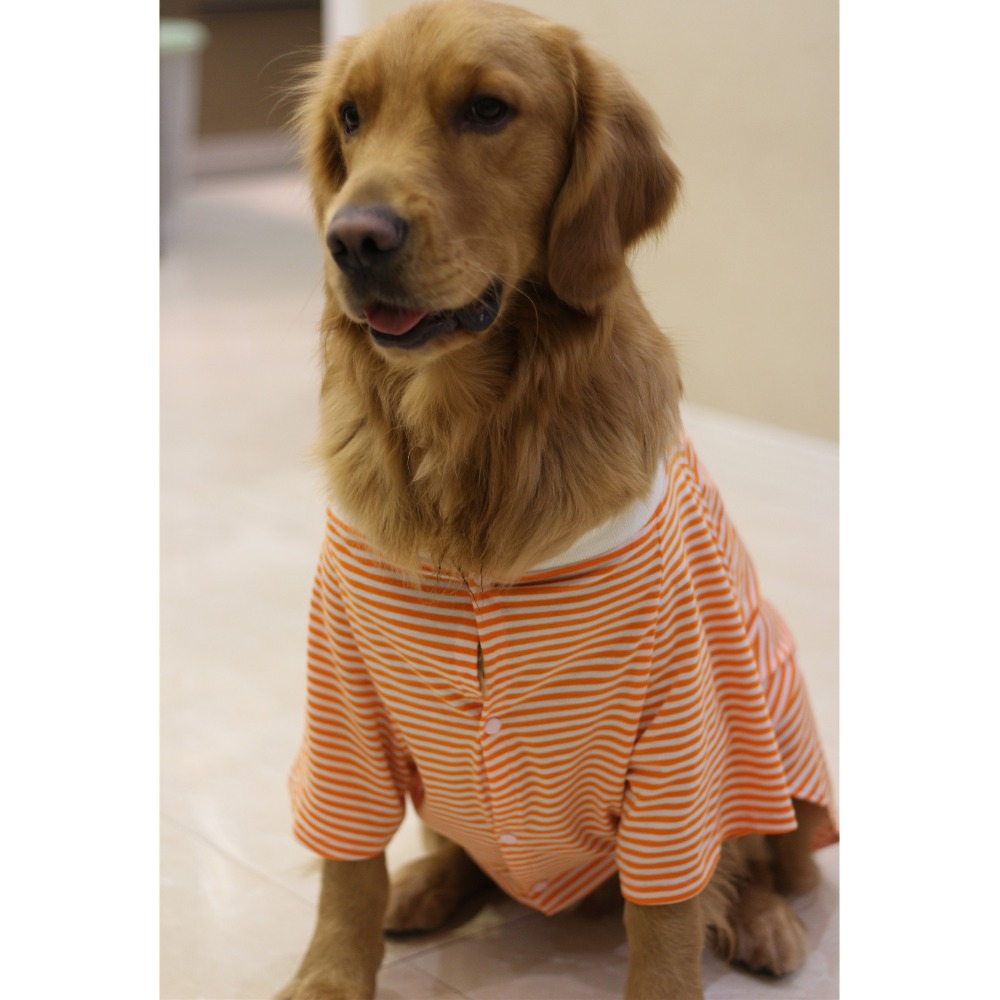 dog costume Shirt (3)