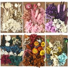 Pack Dried Flowers