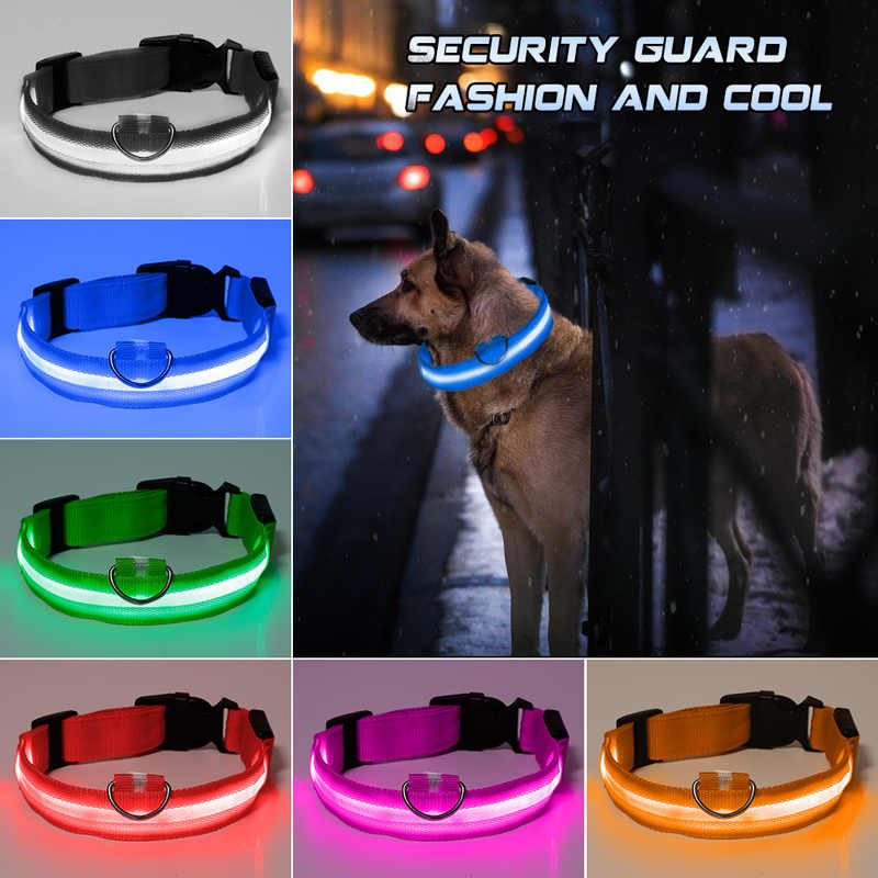 Creativo Led Collare di Cane Anti-Perdita/Evitare Incidenti Stradali Collare di Cane Cuccioli di Cane Collari Led Forniture Prodotti per Animali Domestici Senza batteria