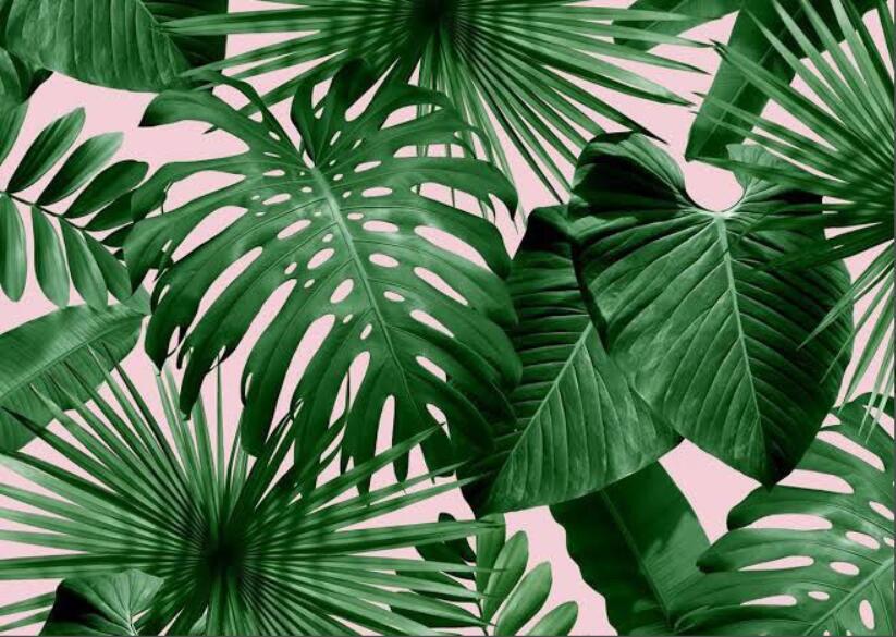 Купить с кэшбэком Beibehang Modern custom 3D wallpaper tropical rain forest palm banana leaf 3D living room background wall murals wallpaper