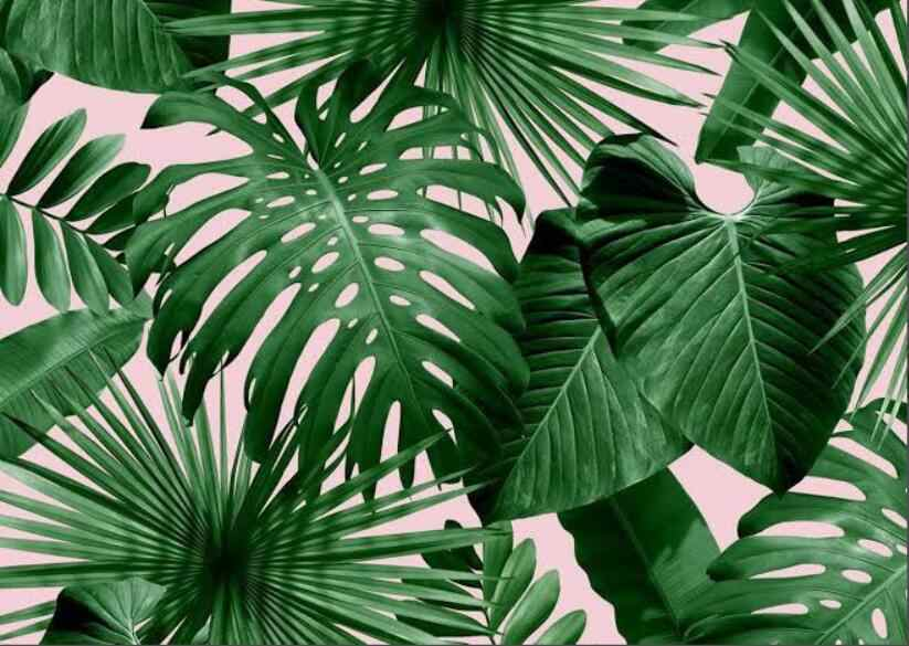Beibehang Modern Custom 3d Wallpaper Tropical Rain Forest Palm Banana Leaf 3d Living Room Background Wall Murals Wallpaper 3d Wallpaper Mural Wallpaperwall Mural Wallpaper Aliexpress