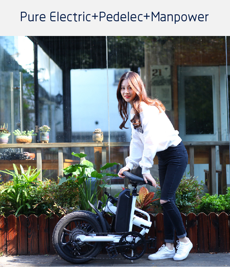 CE approved folding ebike 16 inch pedal assisted electric fold bike with 36V 13AH lithium battery 4