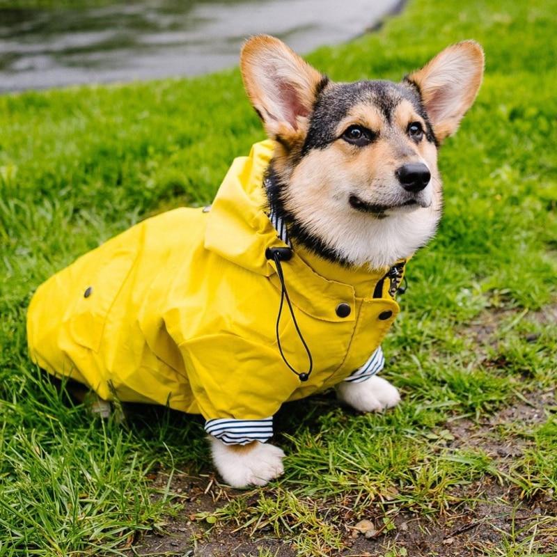 Дождевик для собак, водонепроницаемая куртка