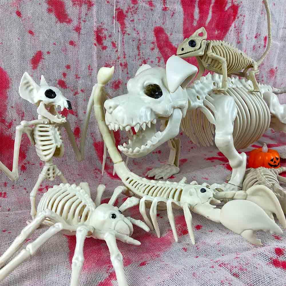 US $4 57 OFF Horror Animal Skeleton Halloween Decoration Props Bat Frog dog Crow Bones House Party Decoration Party DIY Decorations