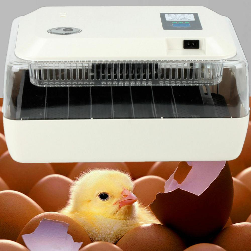 Farm Hatchery Incubator Brooder Machine Chicken Duck Poultry Hatcher LED Display 24 Eggs Incubator Automatic Fully Hatching