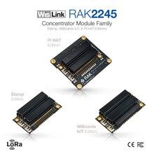 LoRaWAN بوابة وحدة المكثف RAK2245 فيلينك التوت بي قبعة الطبعة على أساس SX1301 تشمل نظام تحديد المواقع بالوعة الحرارة 8 قنوات
