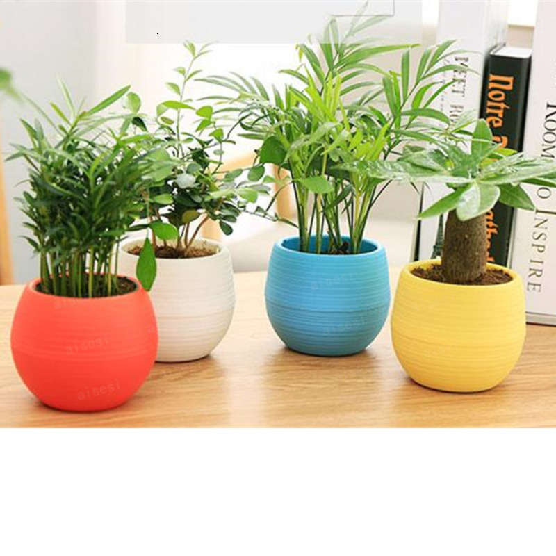 Flower Pot  Mini Flower Pot Unbreakable Plastic Nursery Pots For Succulent Plants Garden Supplies