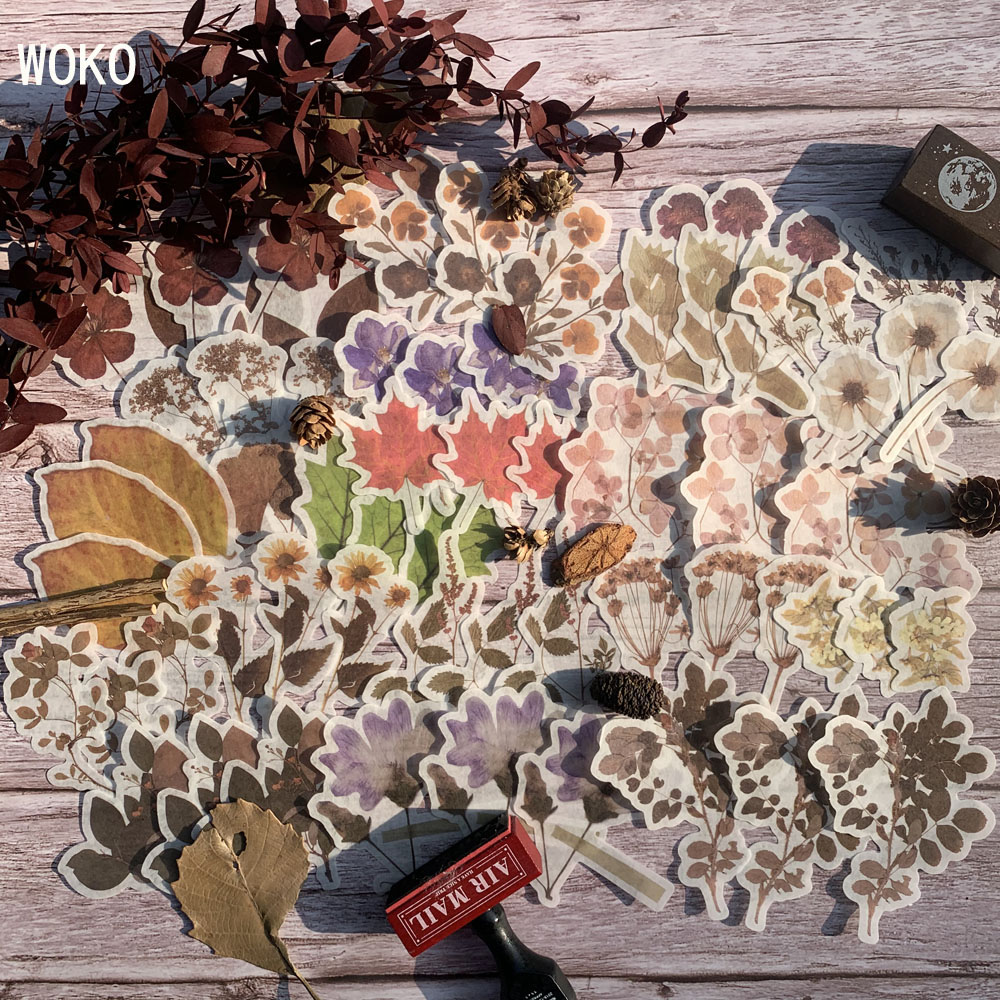 WOKO 60 Pcs Vintage Withered Leaf Translucent Sticker Retro Dried Flower Plant Washi Paper Decoration DIY Journal Scrapbooking