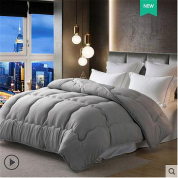 High Quality Winter Thickening Warm Quilt 100% Silk Quilt Spring Autumn Comforters Luxury Quilt King Queen Twin Full Size