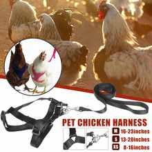 Taille réglable de poule de harnais de poulet avec la laisse assortie de 6ft gilet respirable résilient et confortable pour le chat de chien de canard de poulet