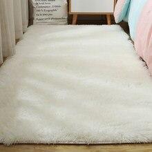 Carpet for Living Room Fluffy Bed Room Rug Home Decor Window Bedside Carpets Thick Rugs Soft Velvet Mat High Quality