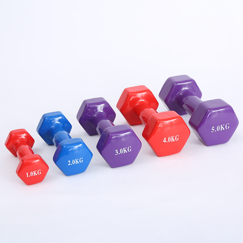 Hot Selling 500g/Piece Dip Dumbbell Fitness Equipment Unisex Dumbbell Family Yoga Dumbbells Multi-Functional Fitness Dumbbells