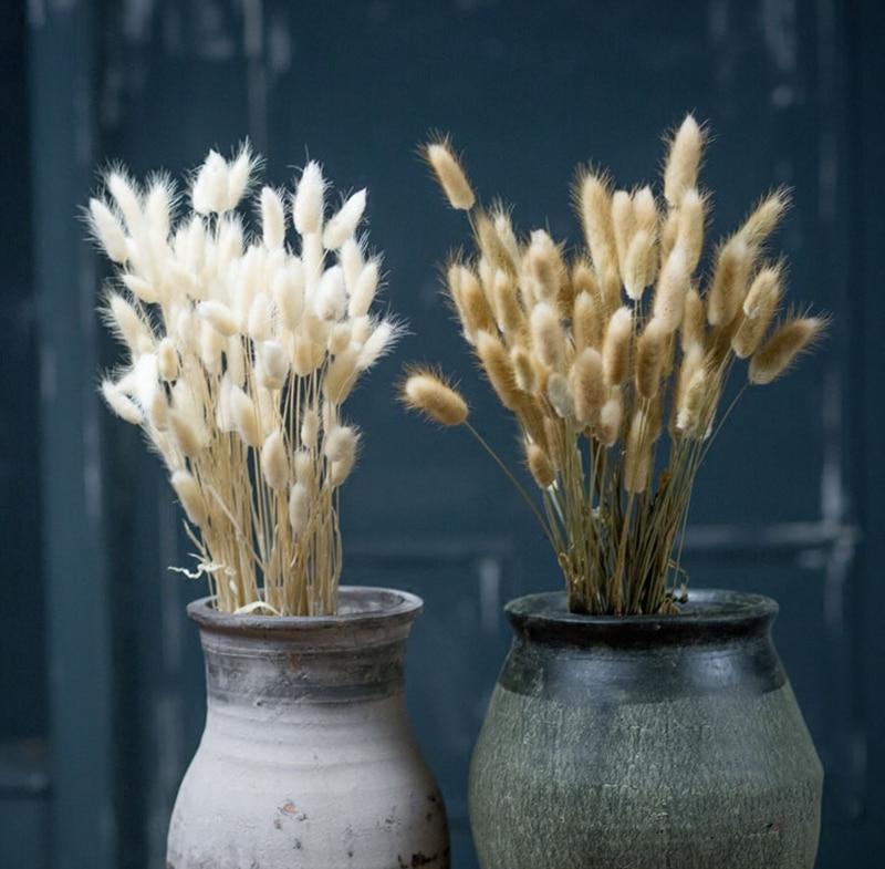 Harr/'s Tail Grass 40 cm Length fo Floral Home Decor 150 PCS Dried Natural Lagurus Flower Bunches