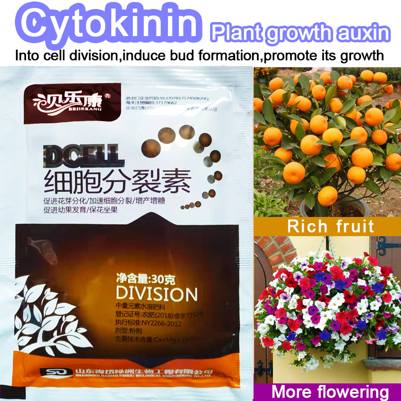 Cytokinin Plant Hormones Improve Vegetable Flower Fruit Tree Better Product And Grow Delaying Leaf Senescence For Garden Bonsai